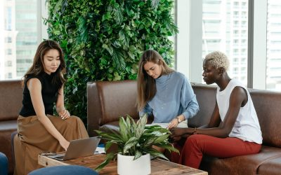 Plastic-Free in the Business: The Ultimate Guide to Going Green in Your Office